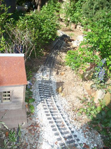 Finished reballasting near Red Mountain.  Had to trim back ajuga and micro-miniature roses.